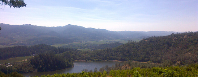 Angwin-20130728-00097